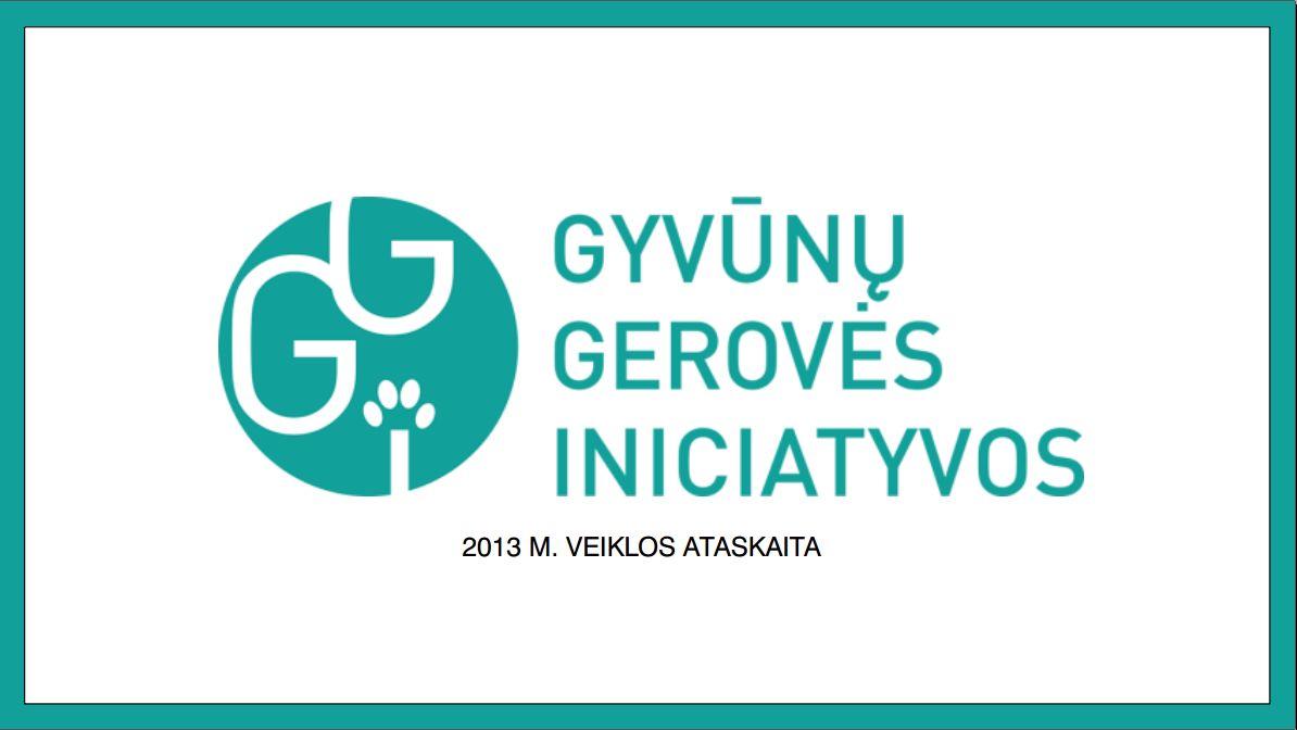 2013_veikla