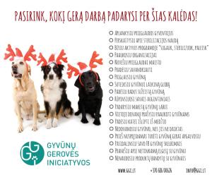 PASIRINK-KOKĮ-GERĄ-DARBĄ-PADARYSI-PER-ŠIAS-KALĖDAS