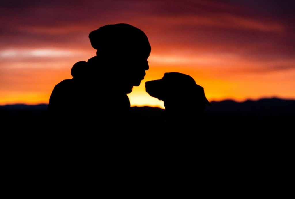 dog girl silhouette