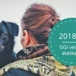 18m-ggi-veiklos-ataskaita