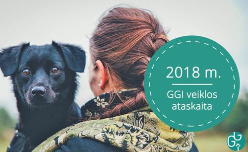 2018-veiklos-ataskaita-cover